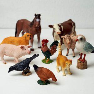 Домашние животные и птицы из пособия «Слушать интересно»